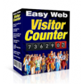 Web Visitor Counter